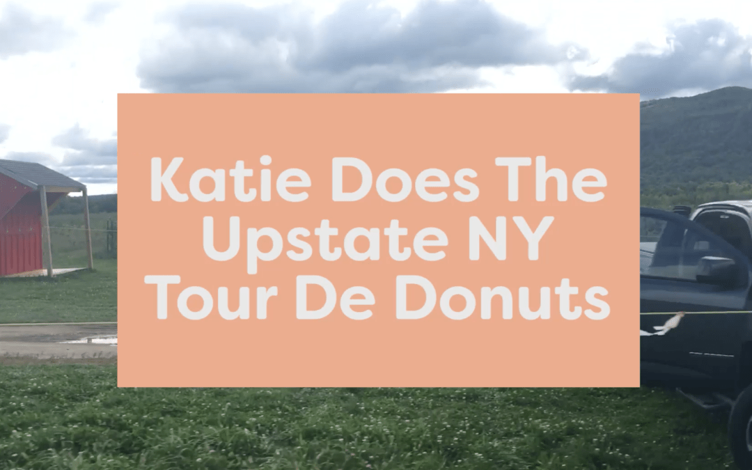 Official Review of the Best Cider Donuts in Upstate New York