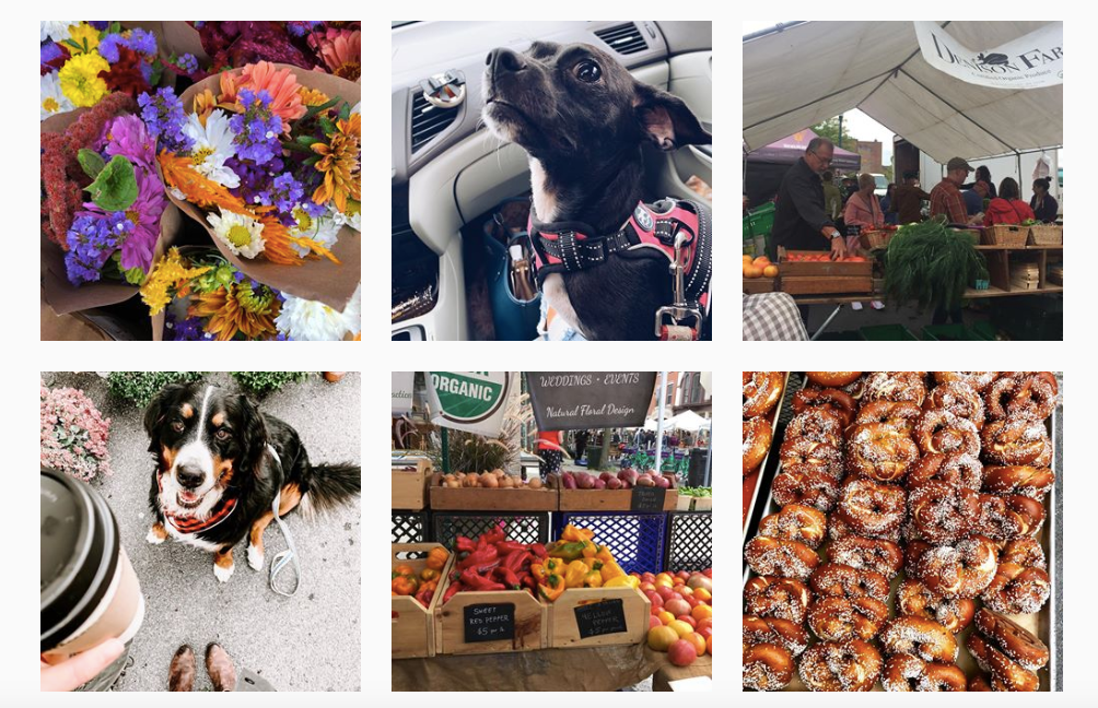 Troy Waterfront Farmers Market Voted Top in the Nation