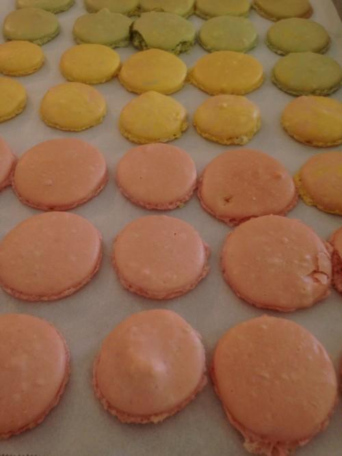 Macarons -baked