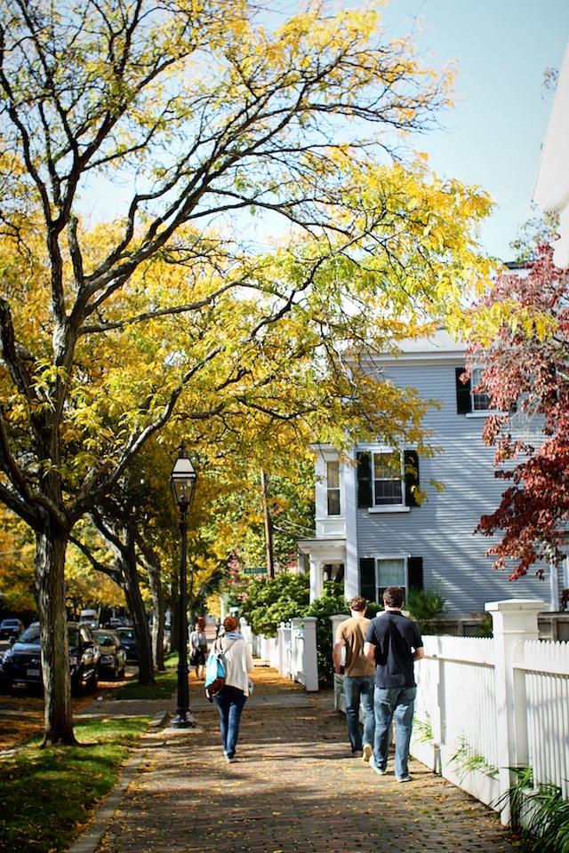 chestnut street walking blog
