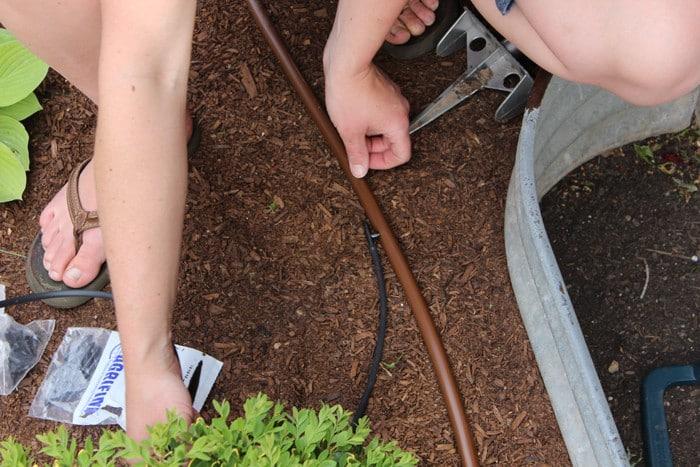 Install Drip Irrigation System
