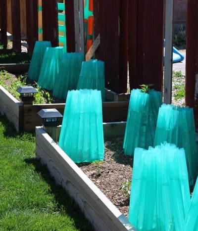 Build a Garden Box