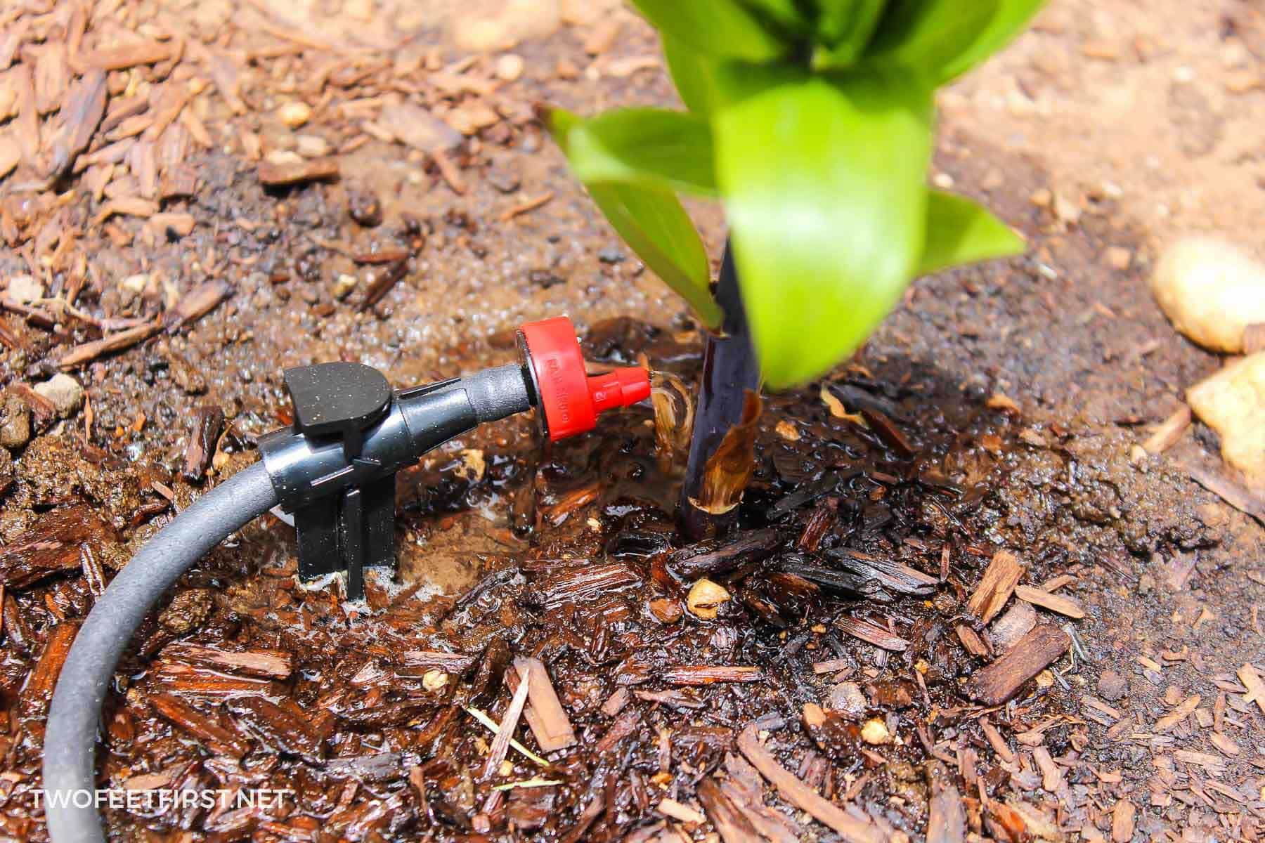drip irrigation system working