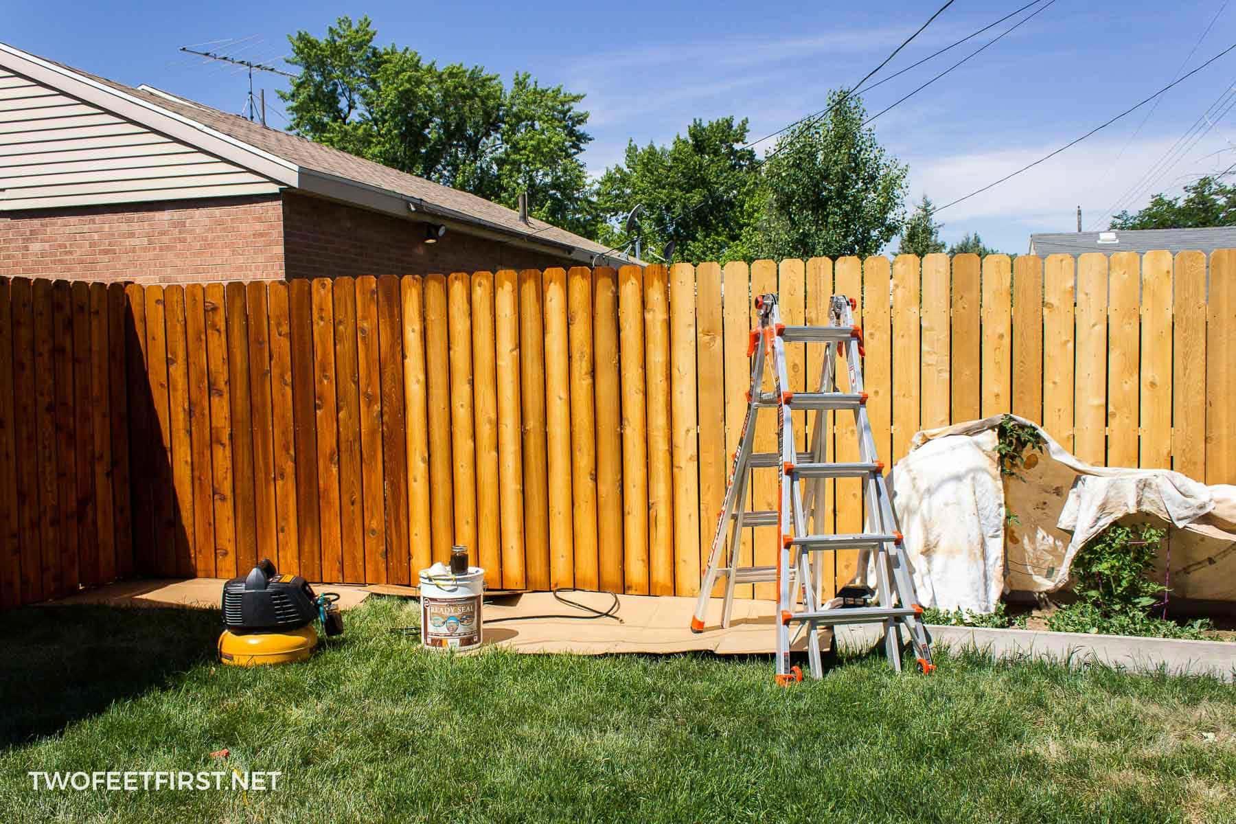how to stain cedar fence