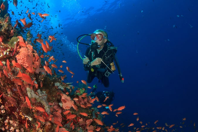 Where To Take Your Padi Advanced Open Water Course In Indonesia