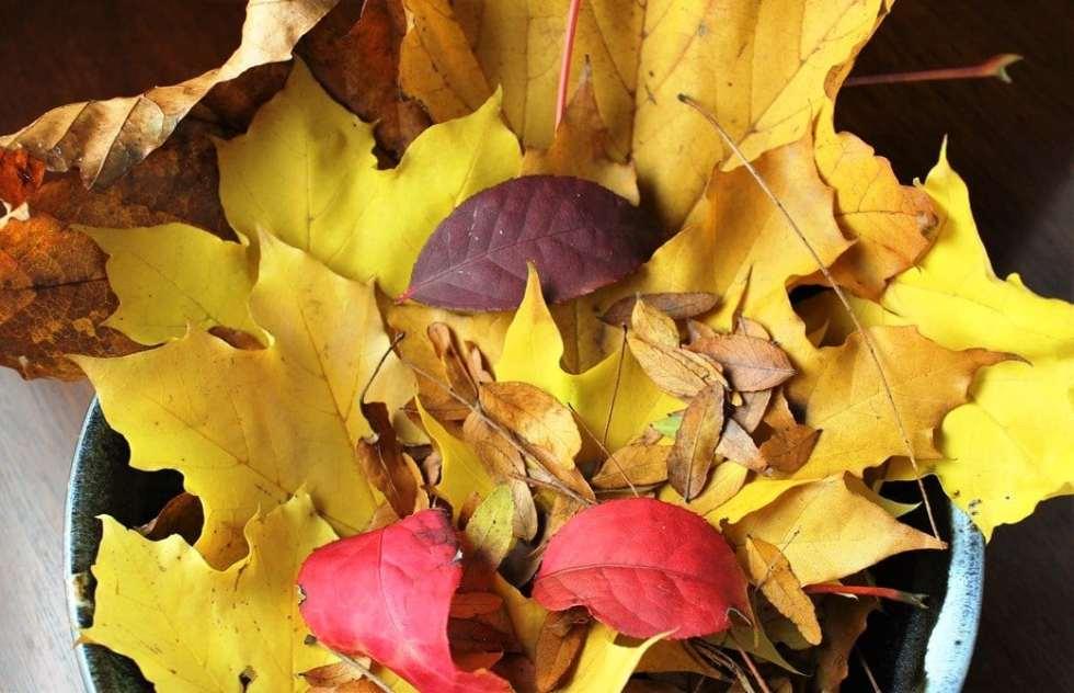10 Favourite Fall/Winter Recipes
