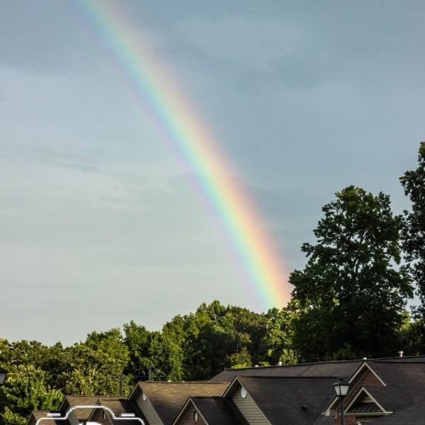 Rainbows Over Northbridge