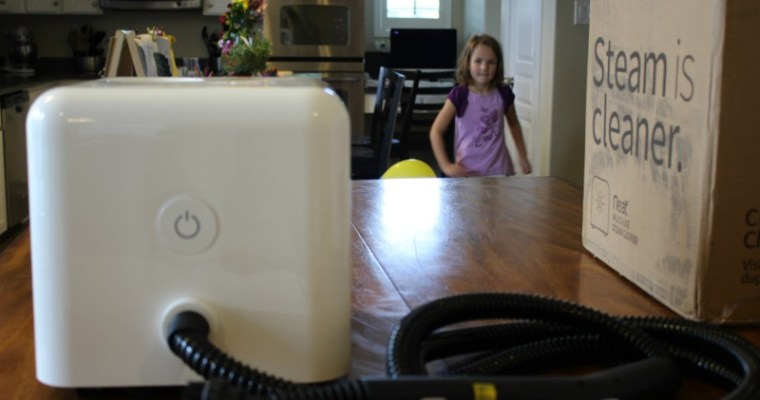 Dupray Neat Review – Our Top Steam Cleaner Pick
