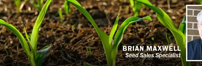 New Seed Hybrids for 2021