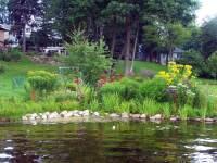 Natural Shoreline Landscaping