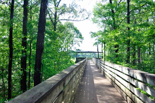 These are the best Free Things To Do Around Mississippi State University!