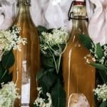 Elderflower syrup bottles with elderflowers on a cloth