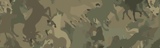 Episode 224 – Horse Camoflage