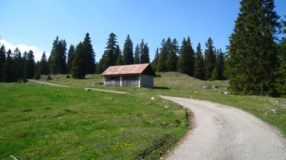 Abri au Pré aux Biches – Vaud – Suisse