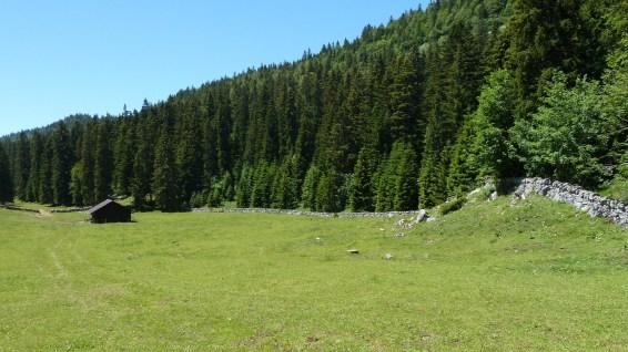 Couvert du Pré de Rolle - Saint-George - Vaud - Suisse