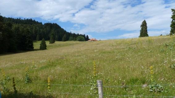 Le Crot - Vaud - Suisse