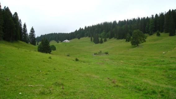La Petite Chaux - Vaud - Suisse
