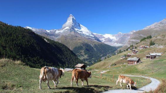 Findeln - Valais - Suisse