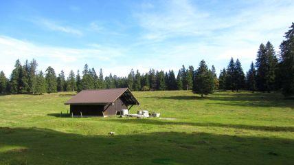 Abri à bétail du Pré de Rolle - Vaud - Suisse