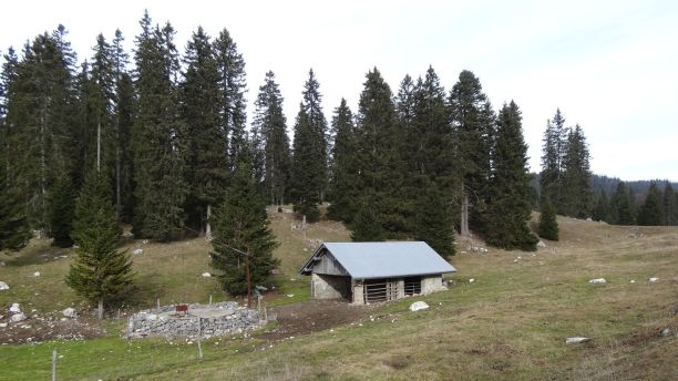 Abri non loin de la Foirausaz - Vaud - Suisse
