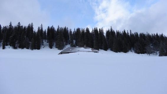 Petite Chaux - Arzier-Le Muids - Vaud - Suisse