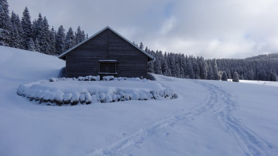 Couvert de la Sèche de Gimel – Vaud – Suisse