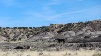 Mesa Penistaja - Cuba - New Mexico
