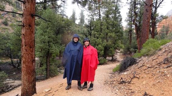Fairyland Trail - Bryce Canyon National Park - Utah