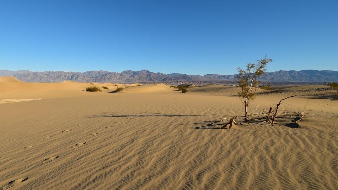 Mesquite Flat Sand Dunes - Death Valley National Park - California