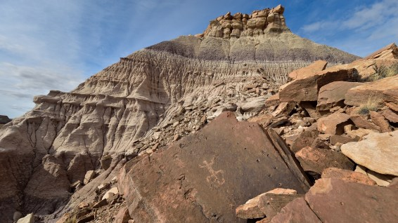 Red Basin - Petrified Forest National Parc - Arizona