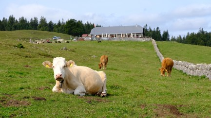 Les Croisettes - Vaud - Suisse