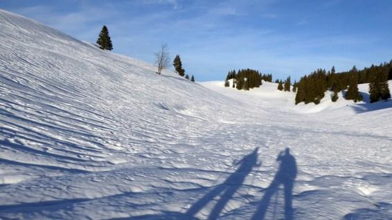 Non loin de la Combe des Amburnex - Le Chenit - Vaud - Suisse