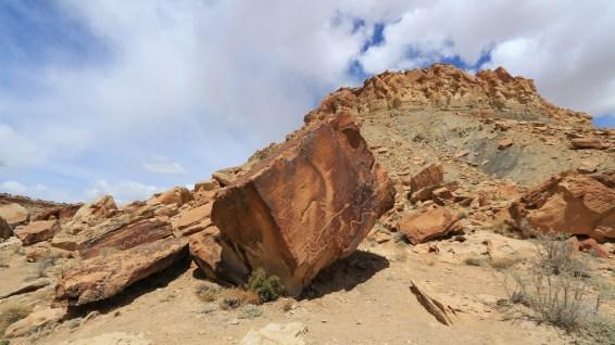 Snake Panel - Molen Reef - Utah