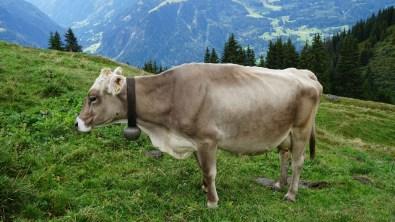 Lag Serein - Grisons - Suisse