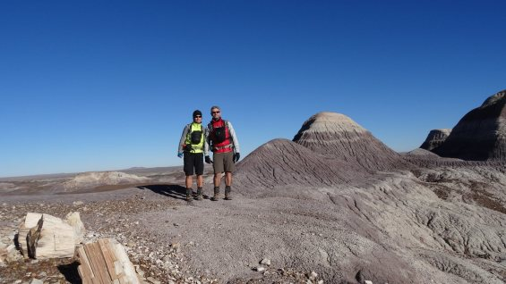 Blue Forest Trail - Petrified Forest National Park - Arizona