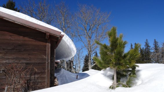 L'Eglantier - L'Abbaye - Vaud - Suisse