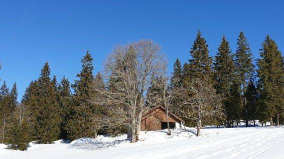 Chalet Neuf - Gimel - Vaud - Suisse