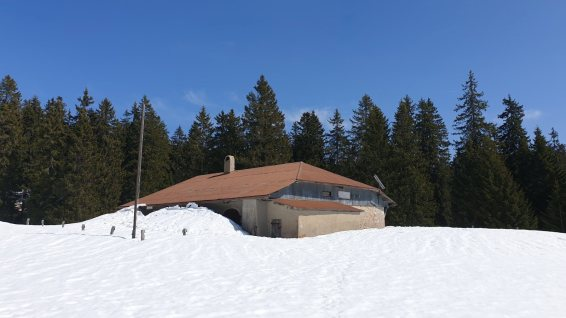 Perroude de Marchissy - Marchissy - Vaud - Suisse