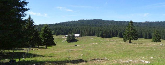 Haut Mont - Arzier-Le Muids - Vaud - Suisse