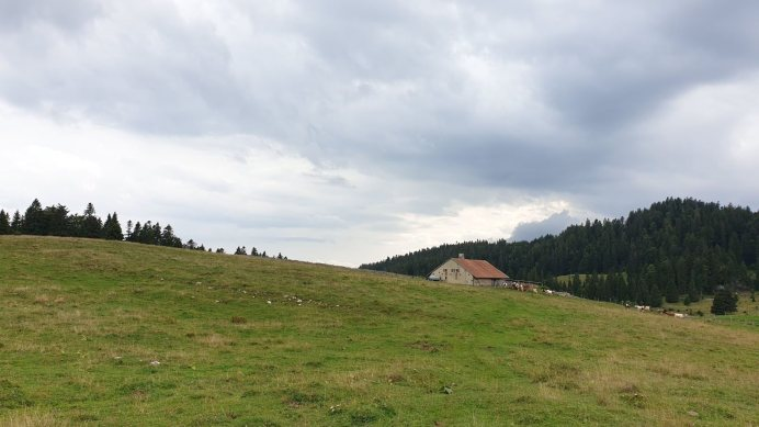 Mondion - Bassins - Vaud - Suisse