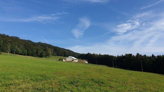 Le Devens - Route de Chardève - Montricher - Vaud - Suisse