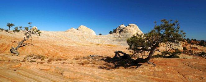Canaan Mountain et les White Domes en 2019