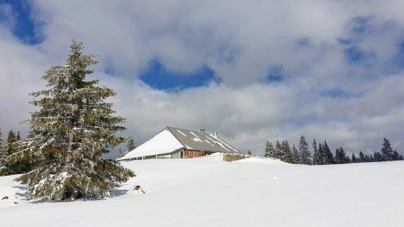 La Racine - L'Abbaye - Vaud - Suisse