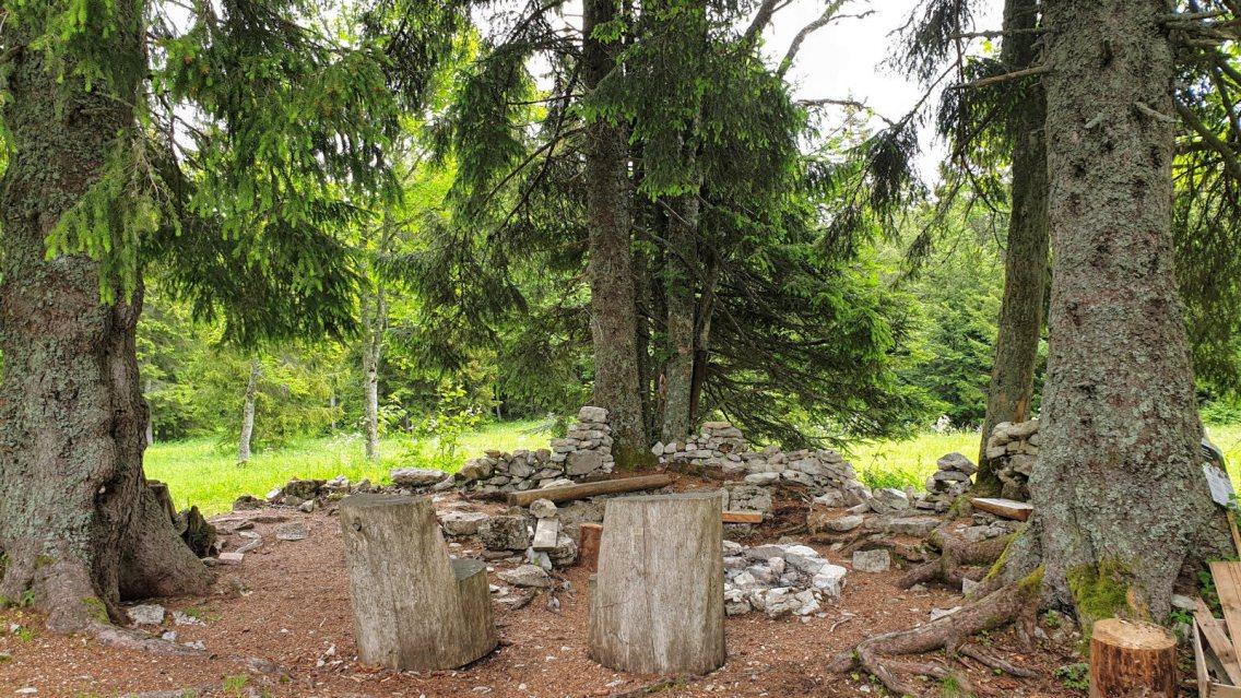 Ancien pâturage du Grand Pré - Saint-George - Vaud - Suisse
