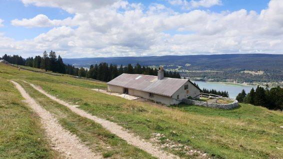 Pièce à Ferdinand - L'Abbaye - Vaud - Suisse