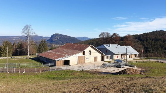 Chalet du Communal de L'Abbaye - L'Abbaye - Vaud - Suisse