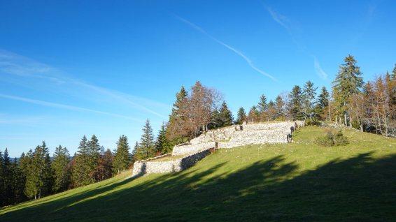 Les Mollards-des-Aubert - Le Chenit - Vaud - Suisse