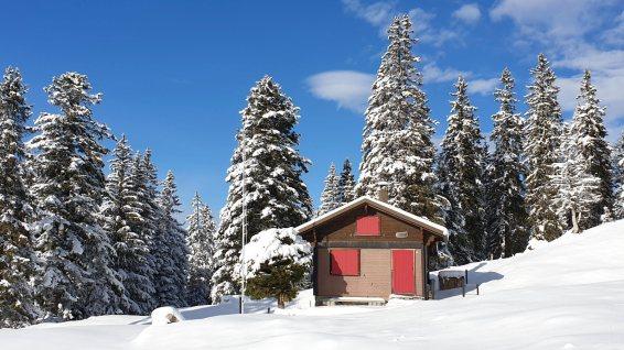 Le Conifère - Le Chenit - Vaud - Suisse