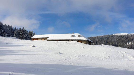 Pré de Ballens - Berolle - Vaud - Suisse