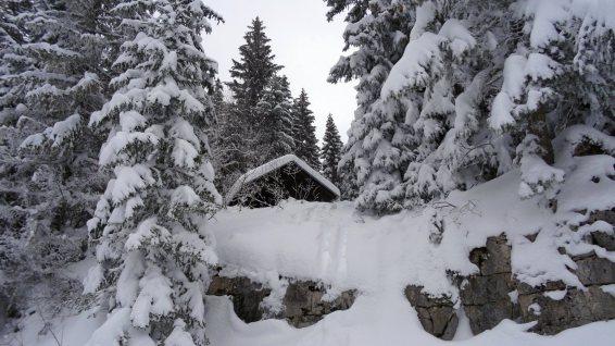 La Joratte - Le Chenit - Vaud - Suisse